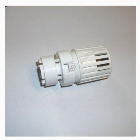 Cabeça termostatica Giacomini R452