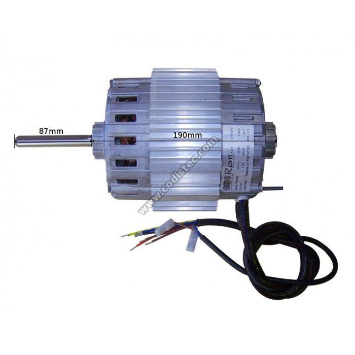 Electric motor rpm s p a type 11092500 codistec for Types of electric motors