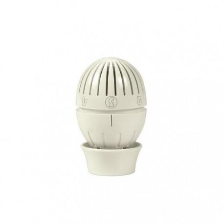 Cabeça termostatica Giacomini R470