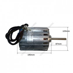 Electric motor Rpm S.p.A Type 11095304